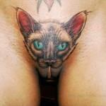 Pussy Tattoos__Pussy Cat.jpg_w480